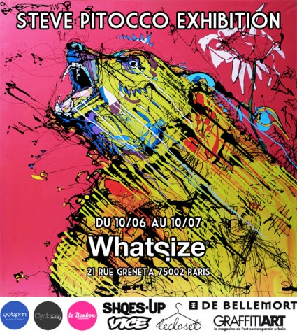 STEVE PITOCCO EXHIBITION