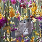 Adidas Consortium World Tour présente :  Stan Smith JUICE