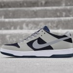 Nike_SB_Zoom_Dunk_Elite_Low_hd_1600